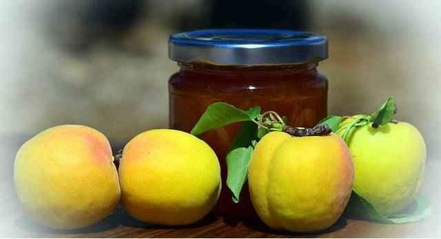 Полезные свойства косточек абрикосов