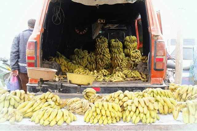 Бананы витамины и минералы