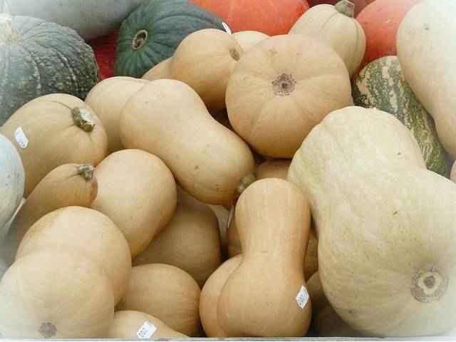 Кабачки витамины и минералы