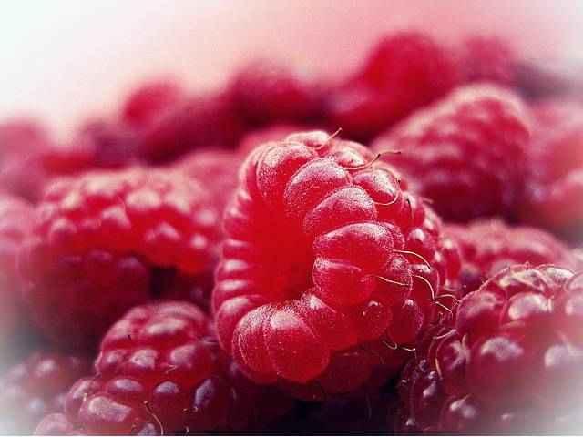 Малина витамины и минералы