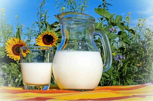 Молоко витамины и минералы