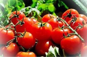 Помидоры витамины и минералы