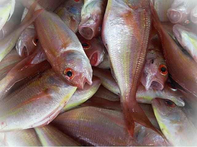 Рыба витамины и минералы