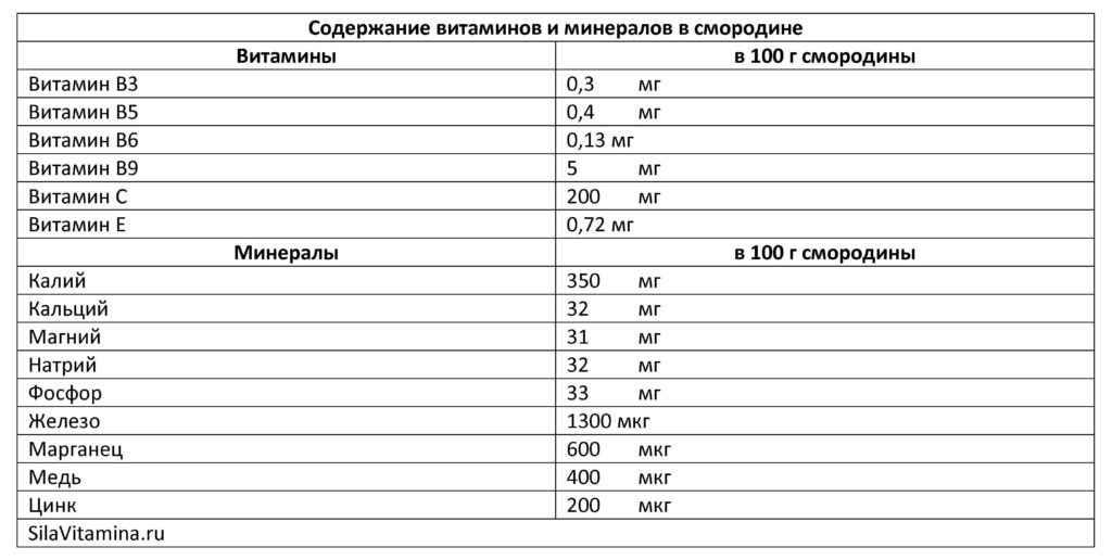 Содержание витаминов и минералов в смородине таблица