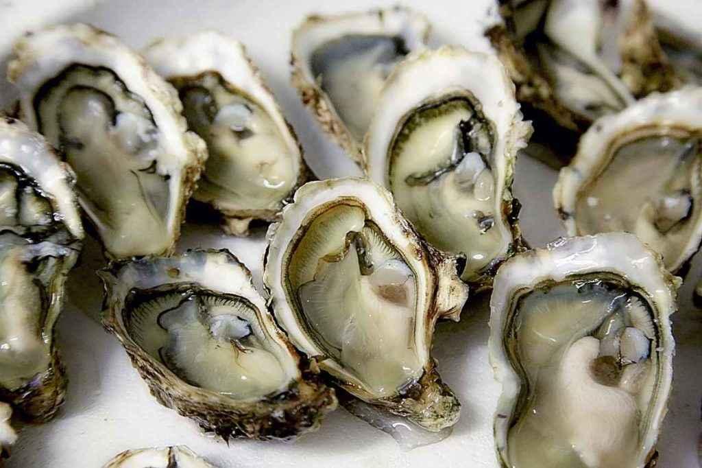 морепродукты содержат много кобальта